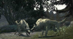 Dragon's Dogma Dark Arisen Screenshot 093