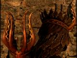 Immortal's Helm