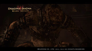 Dragon's Dogma Dark Arisen Screenshot 33