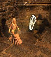 Mystik knight guard 1
