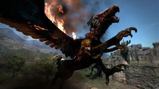 DragonsDogmaDragon