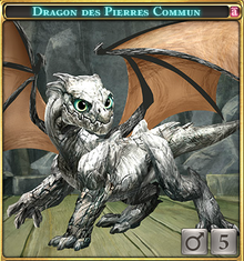 Dragon des Pierres Commun-0