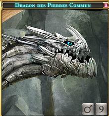 Dragon des Pierres Commun