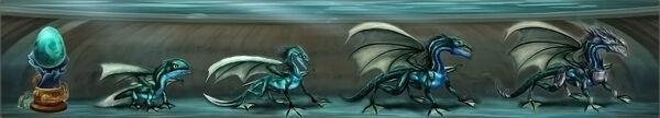 Dragon aqua
