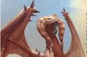 Dragon desert
