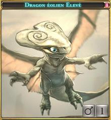 Dragon éolien