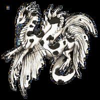 Koi dragon komonryu