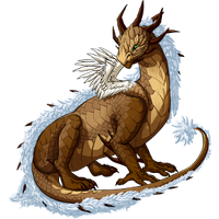 Earth dragon winter