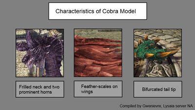 Dragon model characteristics cobra final