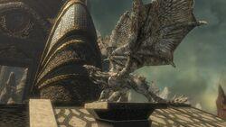 Dragonheart Terrace 005