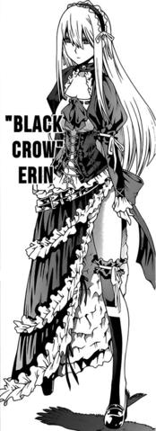 Apariencia de Erin