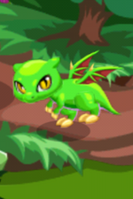 Forest Dragon Child
