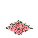 File:Dragon-Story-Flower-Bed-150x150.png