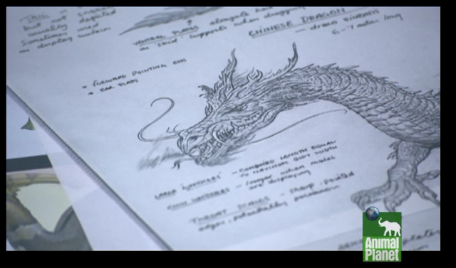 File:Chinese dragon concept art.png