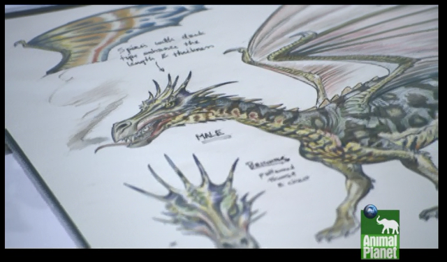 File:Mountain dragon concept art 3.png
