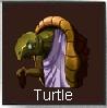 File:Turtle .jpg