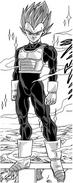 Super Saiyan God/Manga Gallery