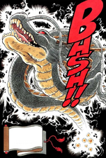 Shenron Summoning Manga Full Colour