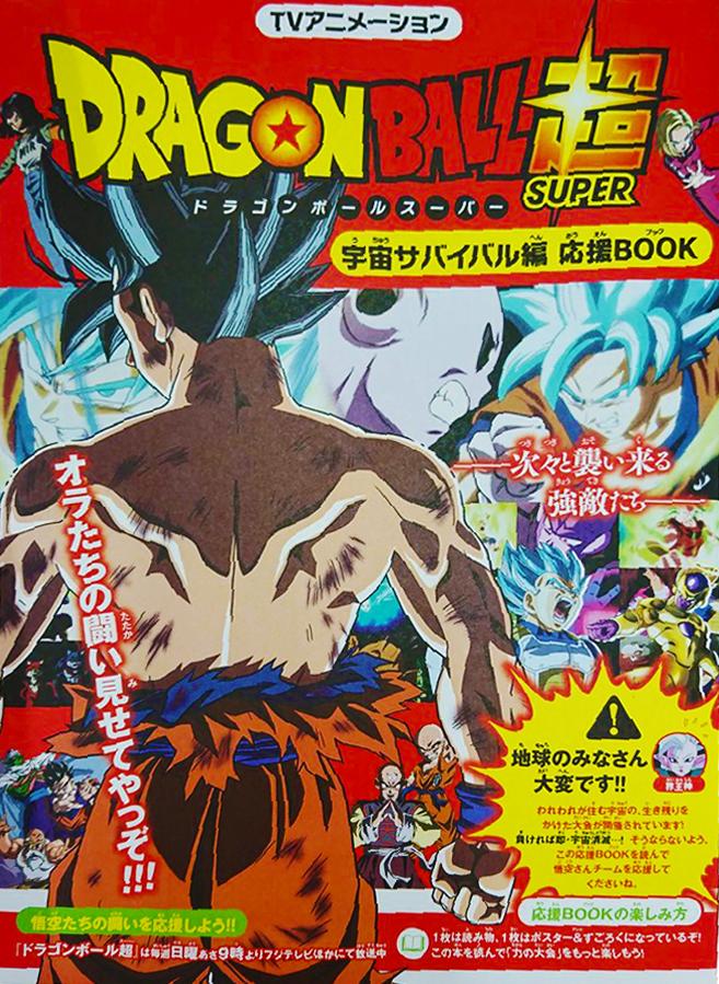 Dragon Ball Book