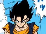 Vegetto/Image Gallery