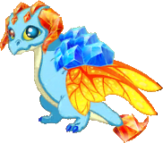 Topaz Dragon Adult