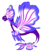Orchid Dragon Adult