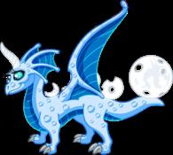 Blue Moon Dragon Adult