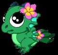 Lotus Dragon Baby