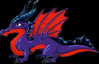 Obsidian Dragon Adult