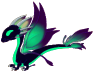 Shadow Dragon Adult