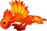 Flammendrache Jung