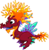 CoralDragonJuvenile