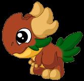 ConiferDragonBaby
