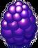 BerryDragonEgg