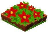 FlowerBoxWinter2012