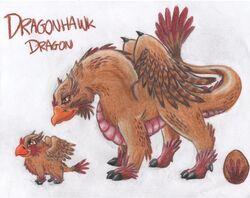 DragonHawk Dragon WTL