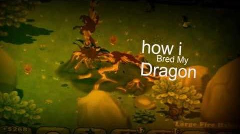How I Bred My Dragon - Opening Theme