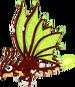 FireflyDragonAdult