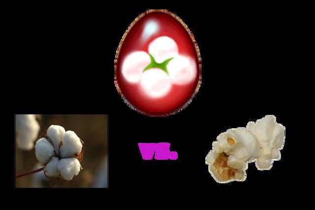File:PopcornCotton.png