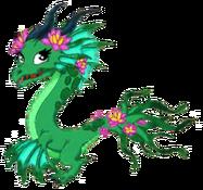 LotusDragonAdult