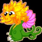 FlowerDragonFireRiftJuvenile