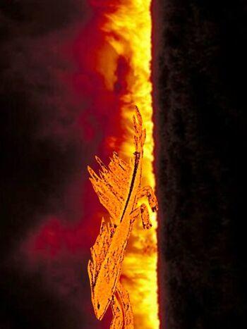 BurnDragonAult