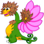 FlowerDragonEarthRiftAdult