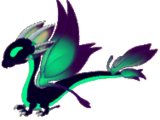 Shadow Dragon