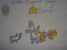 ZCapricorn