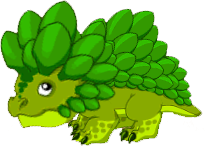 LeafDragonJuvenile