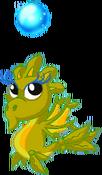 SeaweedDragonTwinBaby