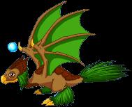 EvergreenDragonTwinAdult