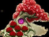 Berrywhite Tree