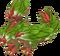 RosebudDragonAdult
